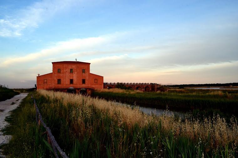 Castiglione Della Pescaia Casa Rossa Ximenes