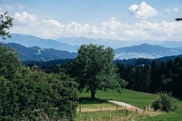 Wandertrilogie Allgäu  Etappe 38 Weiler-Scheidegg-Lindenberg  Wasserläufer Route 11