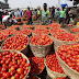 Read Why Tomatoes Are Always Expensive From May Till July And The Glut In August
