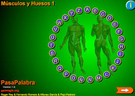 https://b29a5e5c-a-762df989-s-sites.googlegroups.com/a/genmagic.net/pasapalabras-genmagic/areas/social-natural/musculos-y-huesos-1/musculos_huseos1.swf?attachauth=ANoY7cpR0jp90jif0MvDyNAhoz_fHw4NWL-g85hfThlMpFbF2VrHYcAoMFEuns26-WzV2EapiSWzytNjuhqBQffDU5yQ0lcewflgJTvBp7vvHTpMZ5LM4_TkCBvRugOEfdwYk2ltKkhXsbhE81nNX546JNDzF1S4HIV_hmCNJcPb1dp8AsgwWln20JCmiD-e0s3aQe3-K5XaJbt9d5k3jtw37CQztRbVMIGzSC9pb7OejjC6MerxKh0VsMpMadCDemk5FlEXBqHJ1bR_dJ8lLynOXwGwEYEWqn_tKqMVrTKcTXXqTdH19Z8%3D&attredirects=0