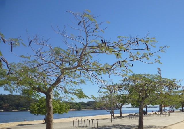 Praia Jurisprudência STJ sobre Licenciamento Ambiental