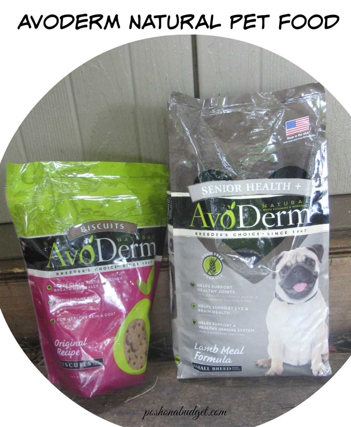 How Hazel Discovered AvoDerm Natural Pet Food #ad @avodermnatural
