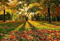Resultado de imagen de paisajes otoño