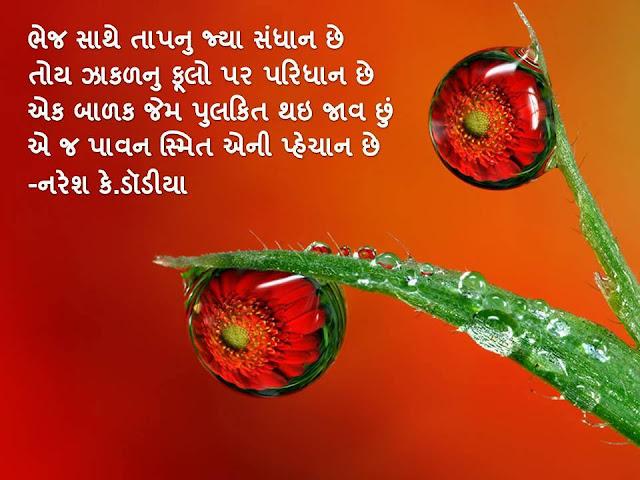 Bhej Sathe Taap Nu Jya Sandhan Che Muktak By Naresh K. Dodia