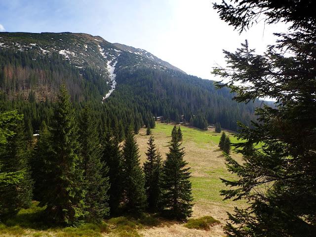 Widoki na Waksmundzką Polanę z czerwonego szlaku