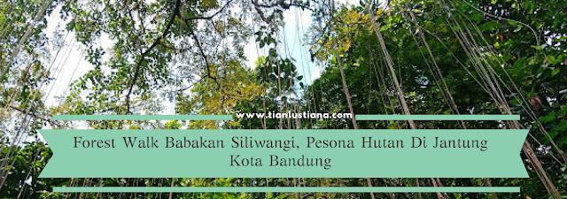 Forest Walk Babakan Siliwangi, Pesona Hutan Di Jantung Kota Bandung