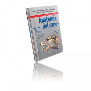 Atlante Di Anatomia Del Cane