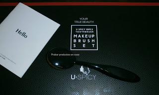 Kit de 10 brochas Uspicy