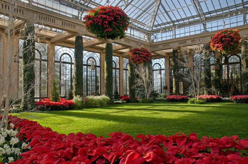 Cestas colgantes con Poinsettia en Longwood Gardens