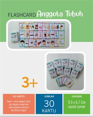 Flash Card Anggota Tubuh