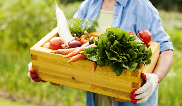 Farming Produce