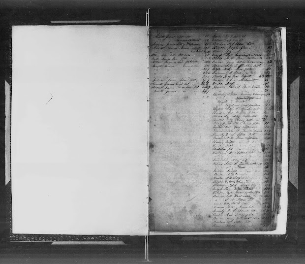 wayne county tennessee genealoy wayne county tennessee genealoy letters testamentary washington state