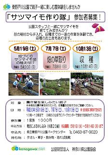 「サツマイモ作り隊」参加者募集!<5/19,7/7,10/13>