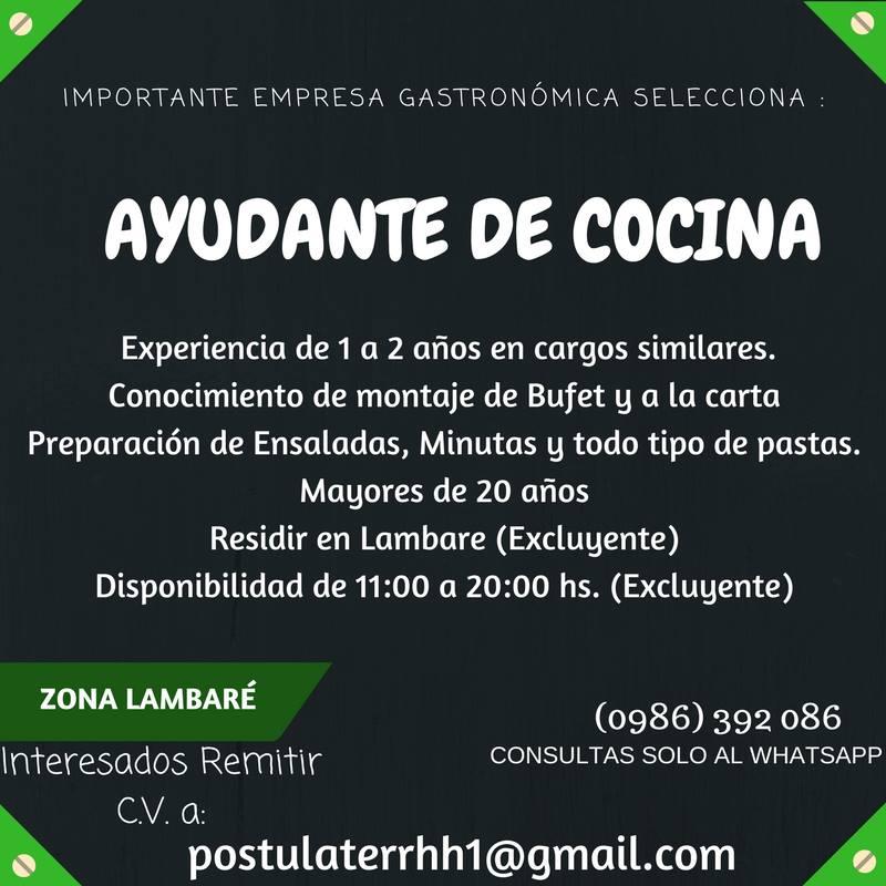 Bolsa de trabajo paraguay empleos 12 19 17 for Ofertas de ayudante de cocina