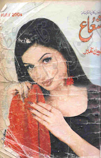 Shuaa Digest May 2004