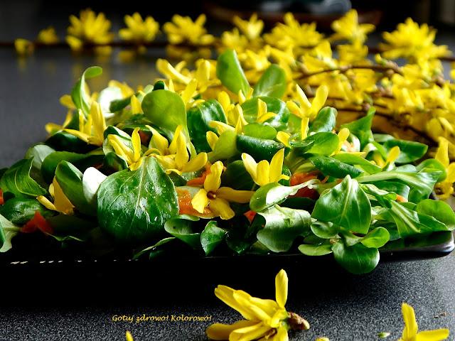 Roszponka z kwiatami forsycji - sałatka obiadowa - Czytaj więcej »