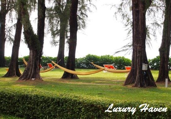 lone pine boutique hotel penang garden hammocks