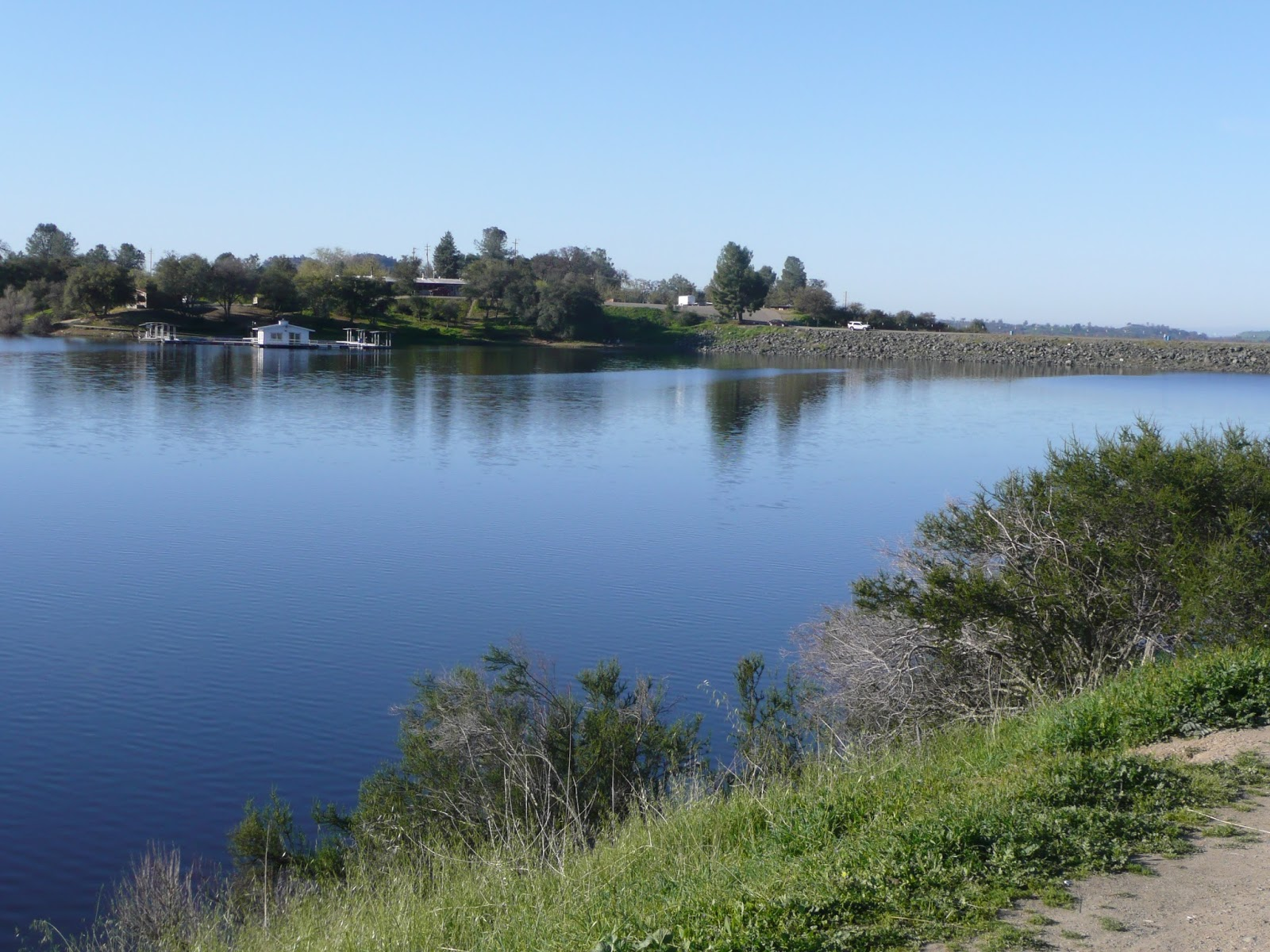 Northern california trout is there such a thing as a for Lake amador fishing