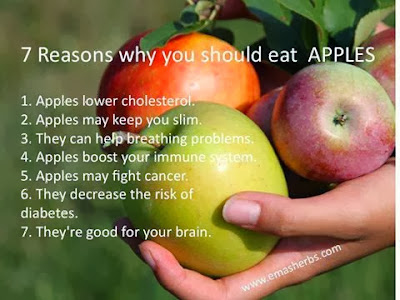 Top 7 Reasons Why you should eat APPLES