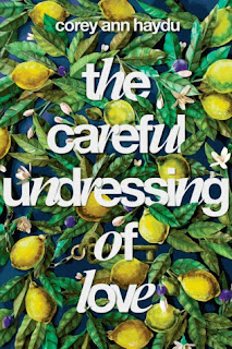 The Careful Undress of Love book cover