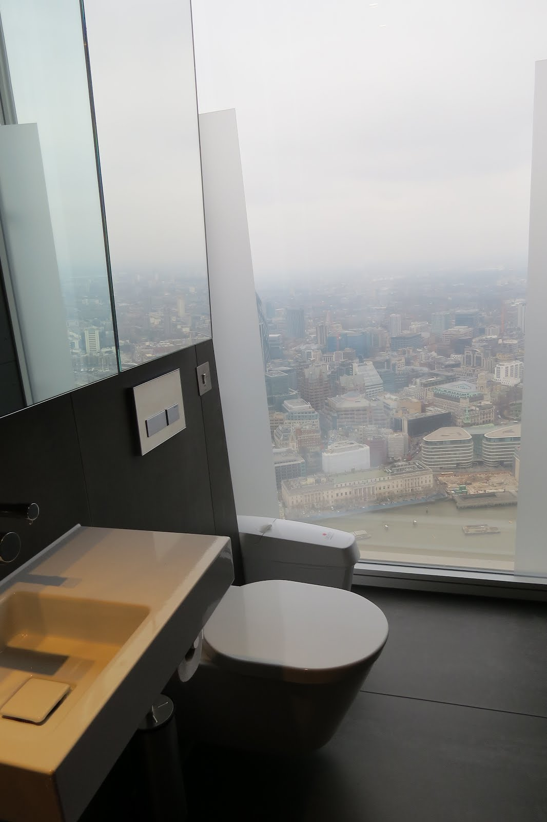 Loo With A View At The Shard