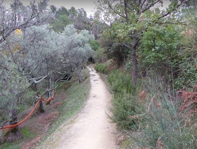 sentiero sestri levante torre manara in mezzo agli ulivi