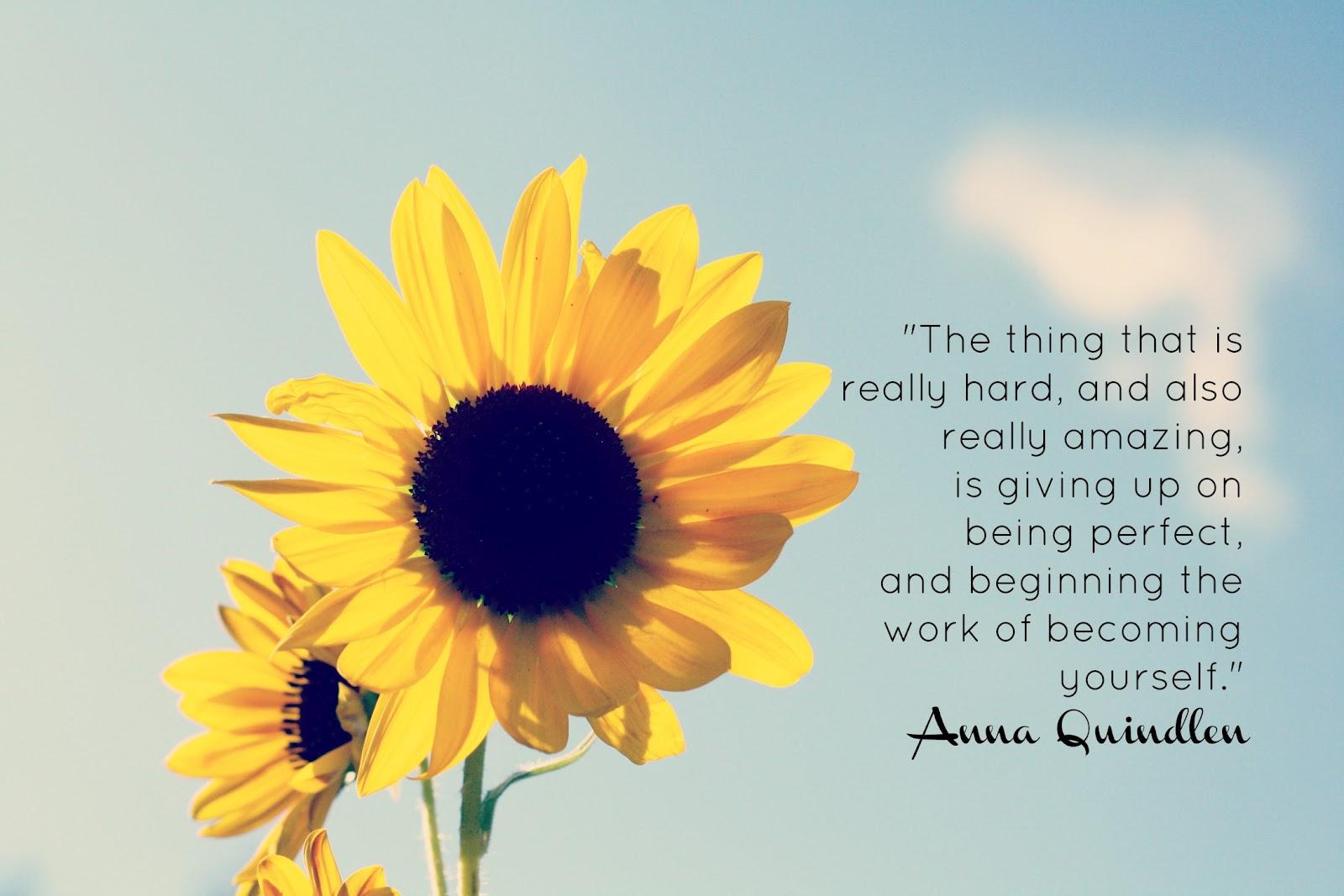 eleletsitz: Sunflowers Tumblr Quotes Images