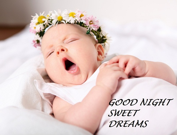 Good Night Sweet Dreams Pics
