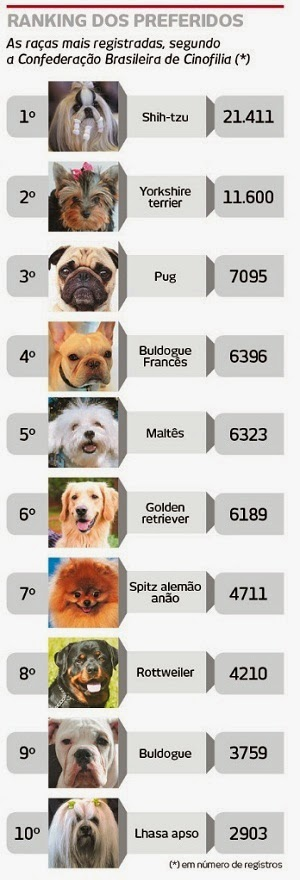 cães da moda