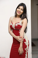 Rachana Smit in Red Deep neck Sleeveless Gown at Idem Deyyam music launch ~ Celebrities Exclusive Galleries 078.JPG
