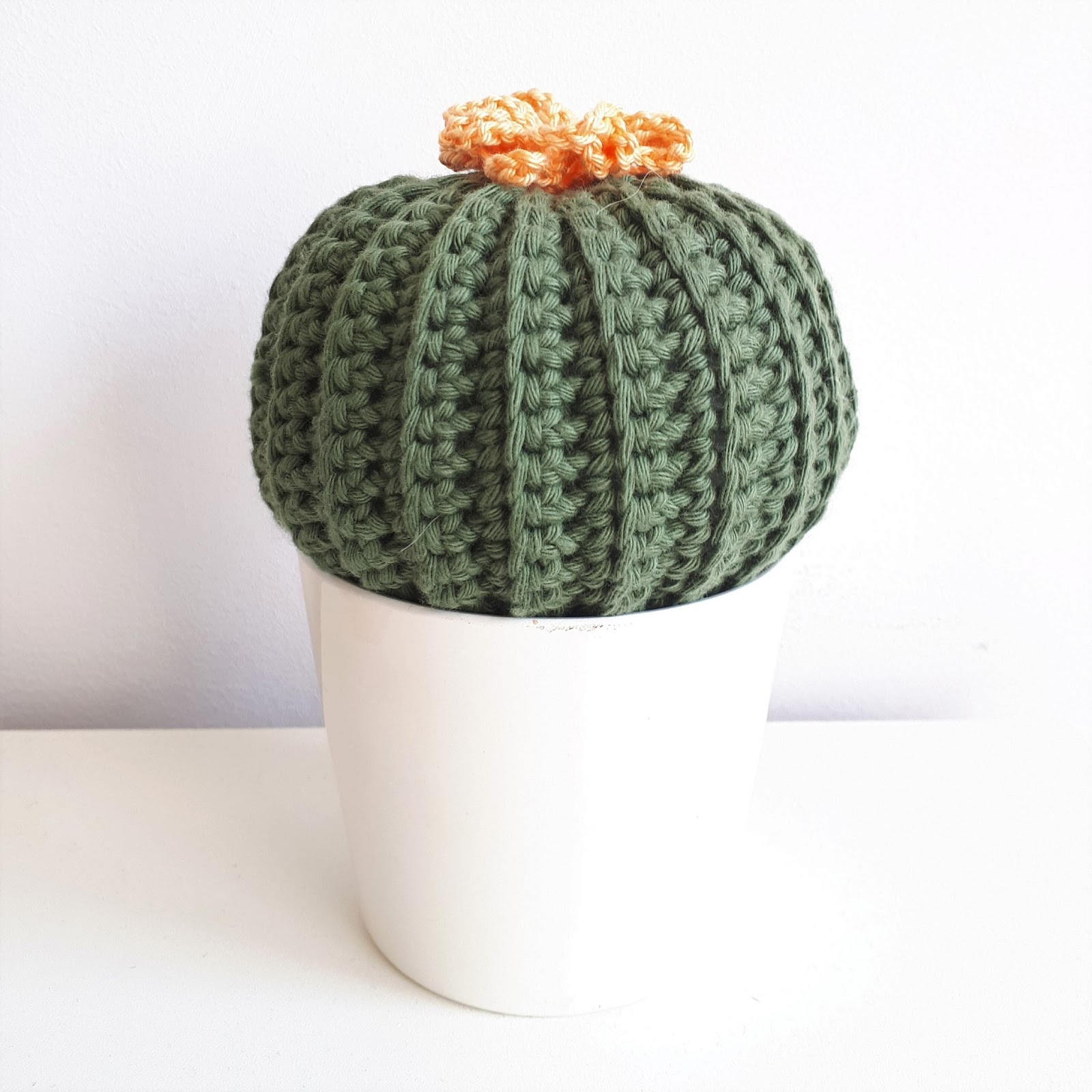Beroemd Haak by Daphne: Cactus #NJ04