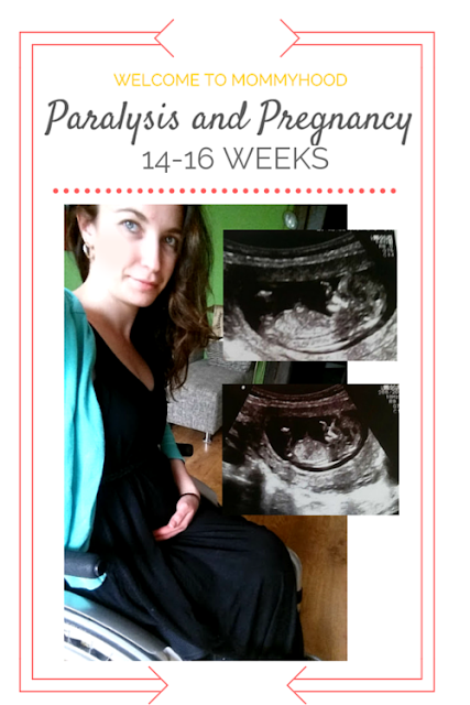 Paralysis and Pregnancy: 14-16 Week pregnancy update by Welcome to Mommyhood #paralysis, #paraplegic, #pregnancy