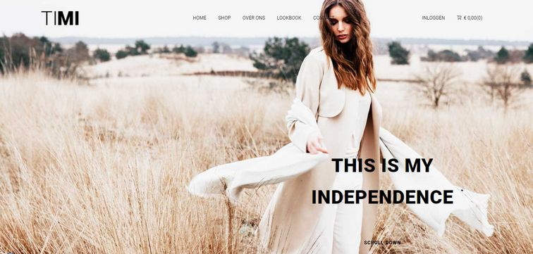 exampleexample of a full-screen responsive background image website- timi