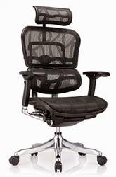 Ergo Elite Chair