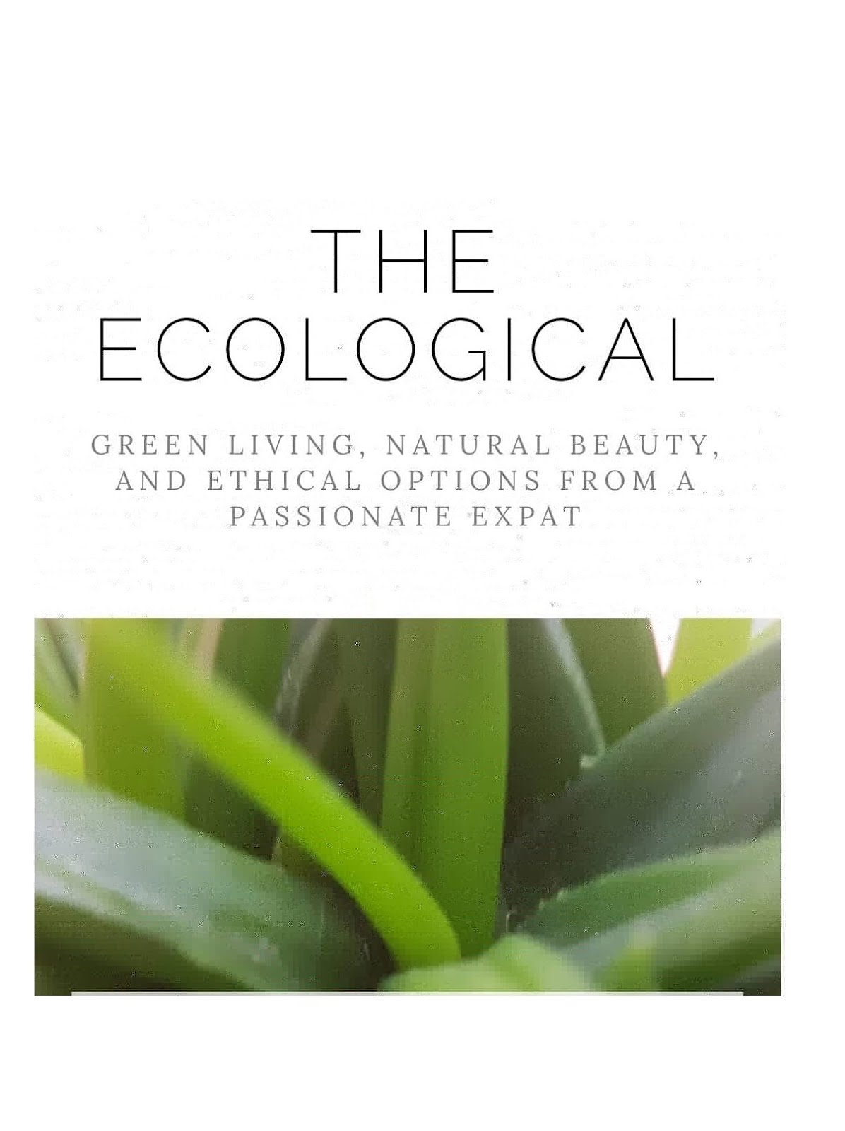 The ecoLogical