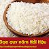 Gạo quy năm Hải Hậu - Gạo quê chính gốc Nam Định