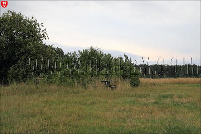 Деревня Подъязовле. Место отдыха около заброшенной фермы