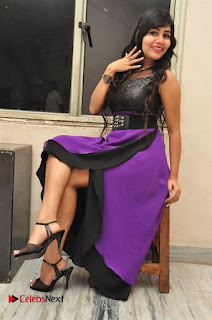 Telugu Actress Rachana Smith Stills at Money is Honey Audio Release  0097.jpg