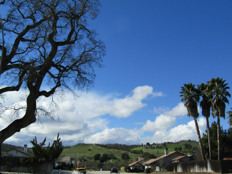 Salinas River Walk Photos and Sky Journal