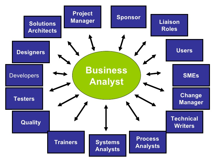 Human Resources Roles Responsibilities 8 Steps To Being An Effective Business Analyst Improve