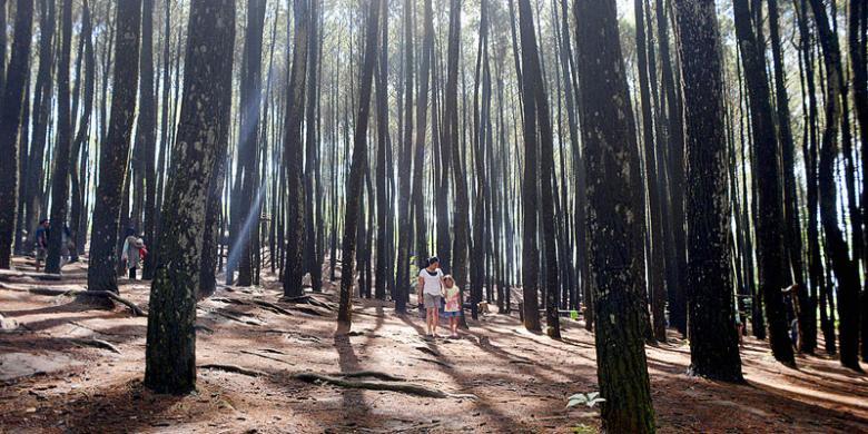 Destinasi Wisata Jogja Terbaru Yang Harus Disempatkan untuk Dikunjungi