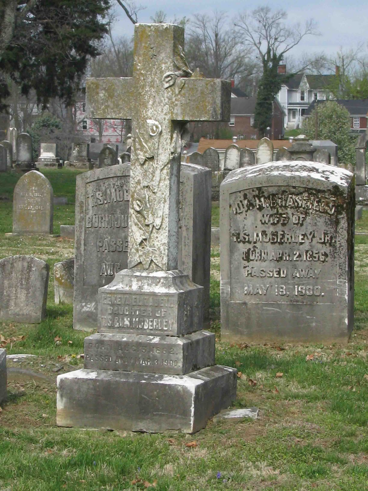 A Grave Interest The Different Types Of Crosses In The