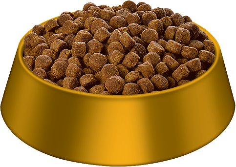 Dog food buying guide