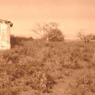 Fazenda  Gravatá -1854