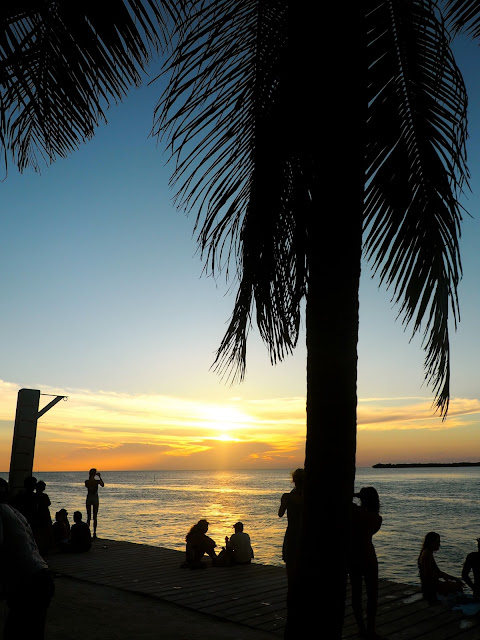Sunset with palm tree silhouette at The Split, Caye Caulker, Belize