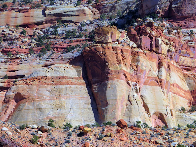 A large cliff face with red and white strata.