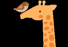 Жираф и воробей
