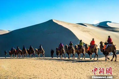 Back in the saddle: Camel-riding rejuvenated in western China's Dunhuang