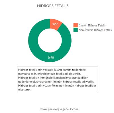 hidrops fetalis