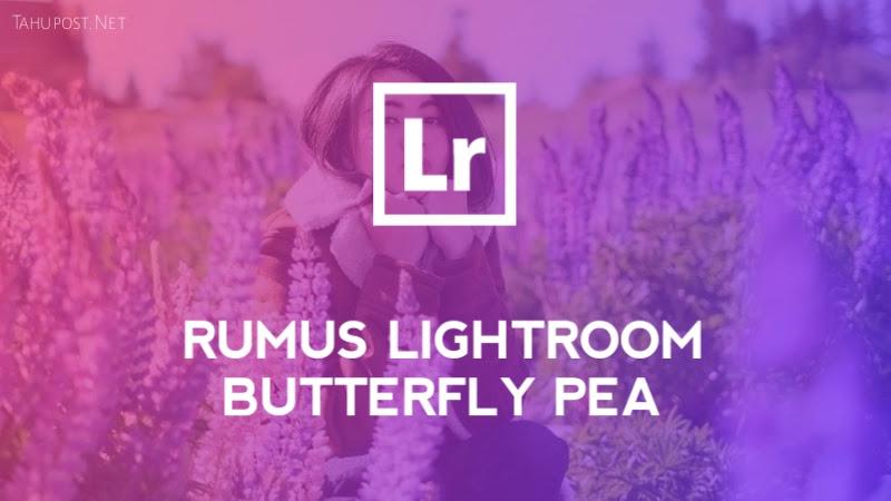 Preset Lightroom Ala Selebgram - Butterfly Pea